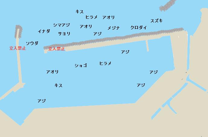 勝浦港ポイント図