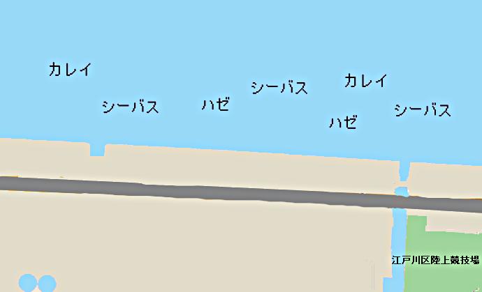荒川河口ポイント図