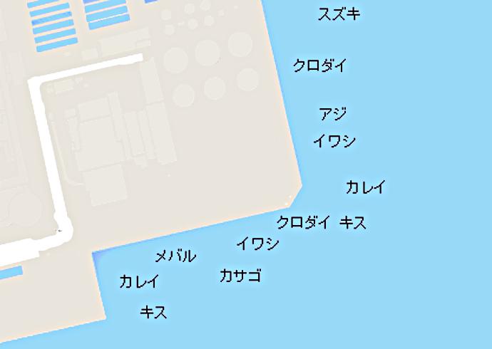 磯子海釣り公園ポイント図