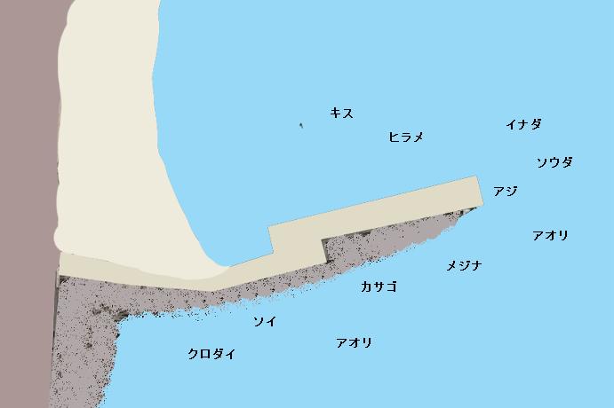熱川大堤防のポイント