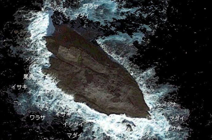 カツオ島のポイント