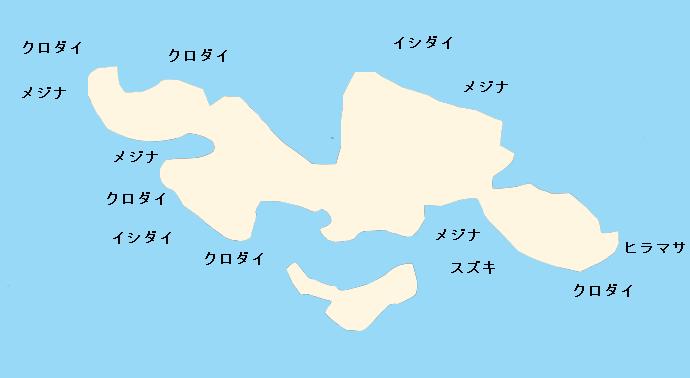 白浜沖磯江ノ島のポイント
