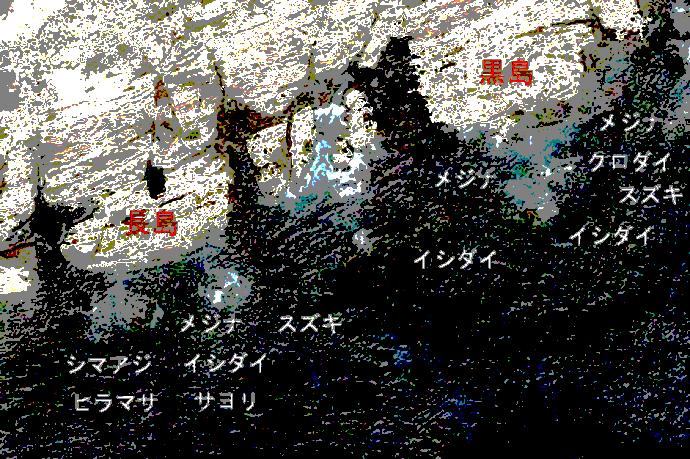 白間津の磯ポイント図