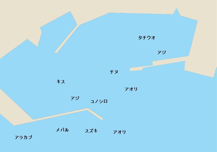 大道港のポイント