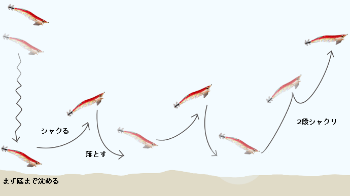 エギングの基本的なアクション