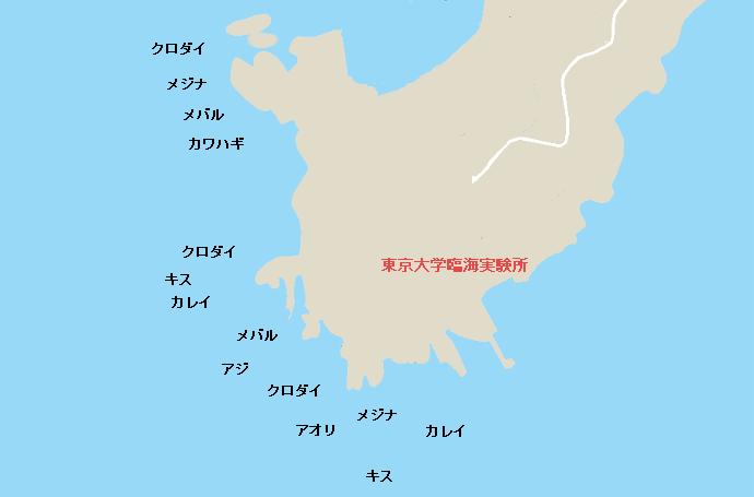油壷東大臨海実験場下の磯ポイント図