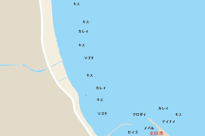金田海岸ポイント図