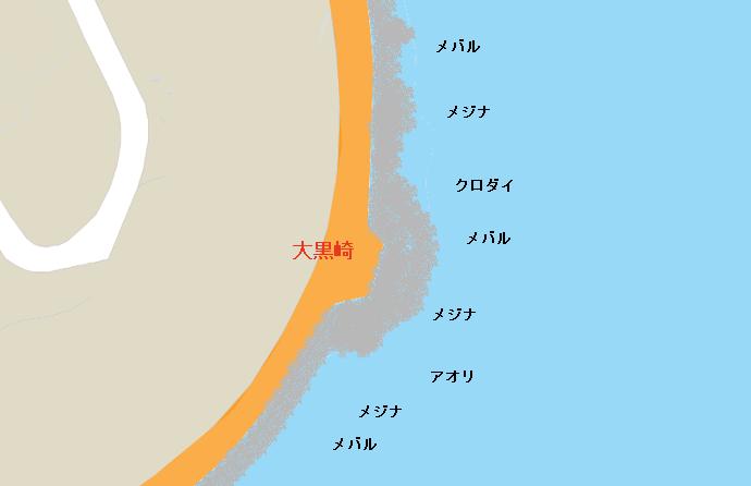 大黒崎ポイント図