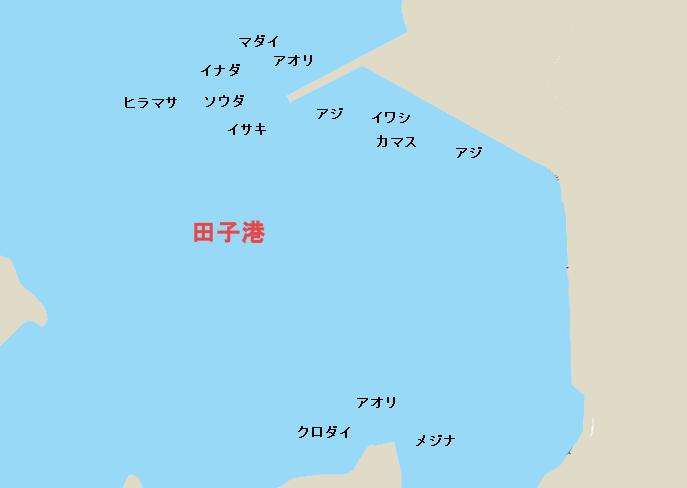 田子港のポイント