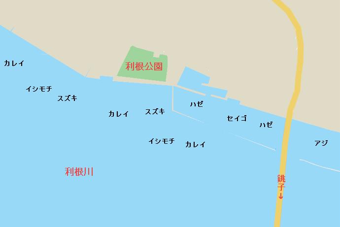 利根川河口のポイント