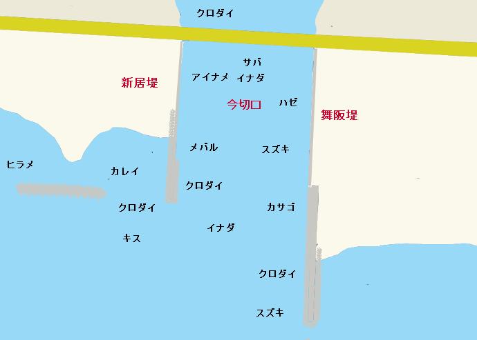 浜名湖今切口(舞阪堤・新居堤)のポイント