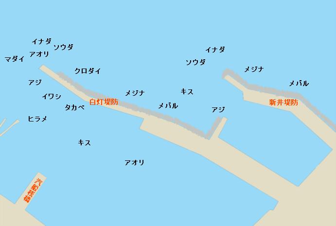 伊東港のポイント