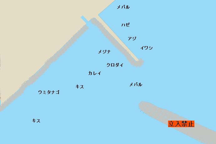 小坪漁港のポイント