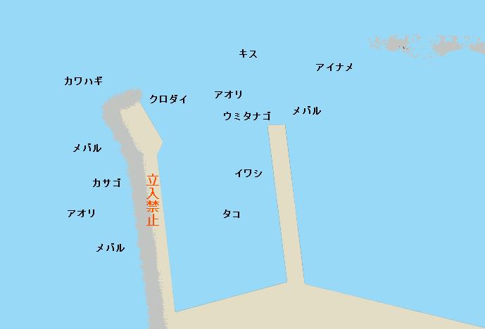 真名瀬港のポイント