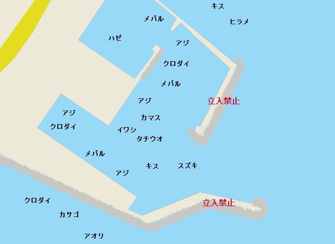 大磯港のポイント