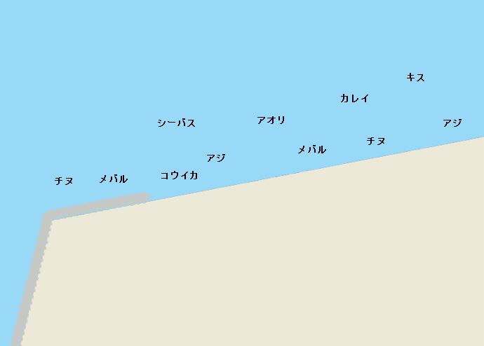 赤坂海岸のポイント