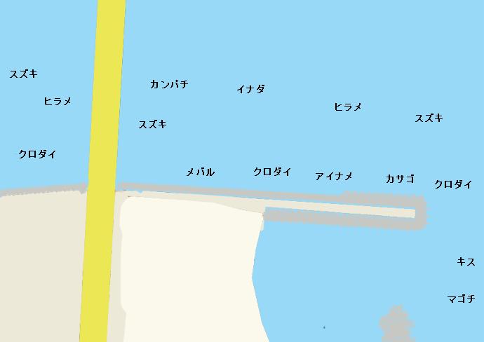 浜名湖新居堤のポイント