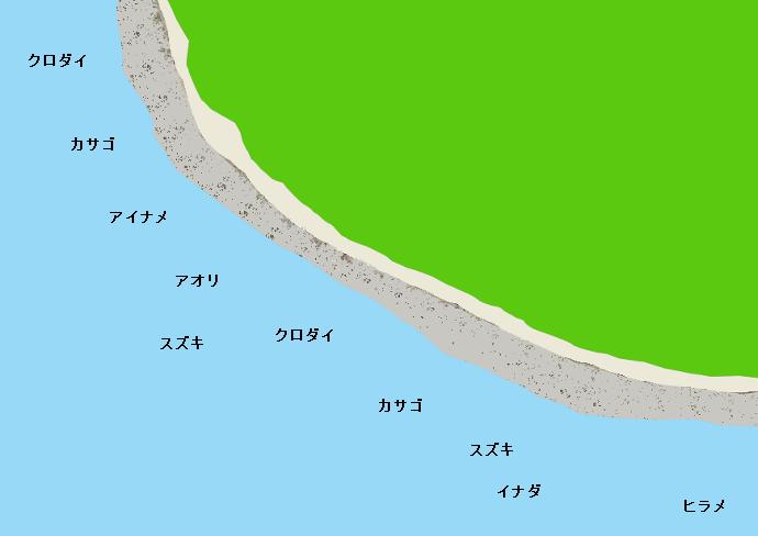 伊良湖岬のポイント