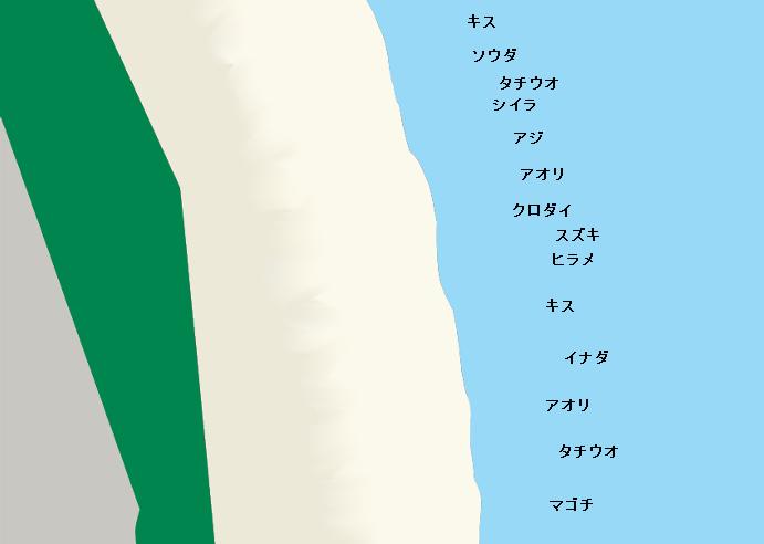 石津浜のポイント