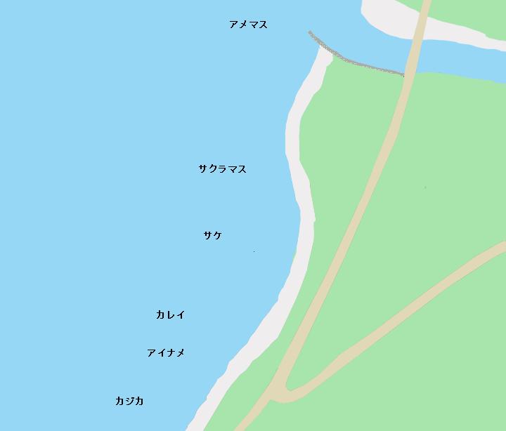 舎熊海岸のポイント