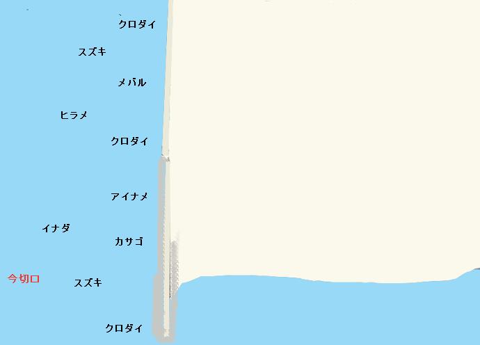 浜名湖舞阪堤のポイント