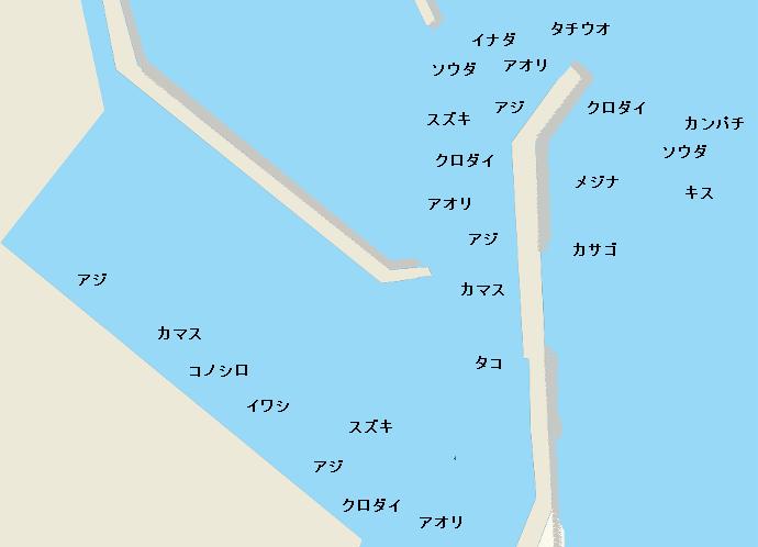 小川港のポイント