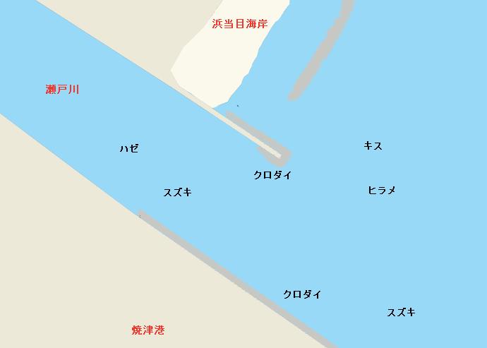 瀬戸川河口のポイント