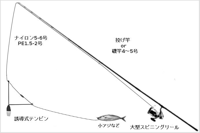 ヒラメのブッコミタックル(竿:投げ竿または磯竿4-5号、リール:大型スピニングリール、ライン」ナイロン5-6号、オモリ:誘導式L字天秤15-25号、エサ;小アジ、イワシなど)