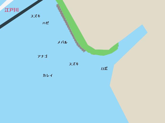 江戸川河口のポイント
