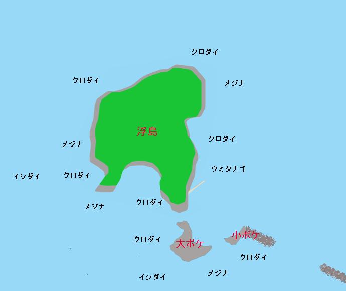勝山沖磯 浮島のポイント