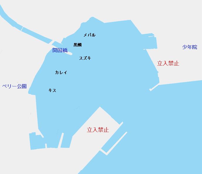 久里浜港のポイント