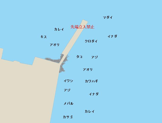 城ヶ島黒島岸壁、黒島堤防のポイント