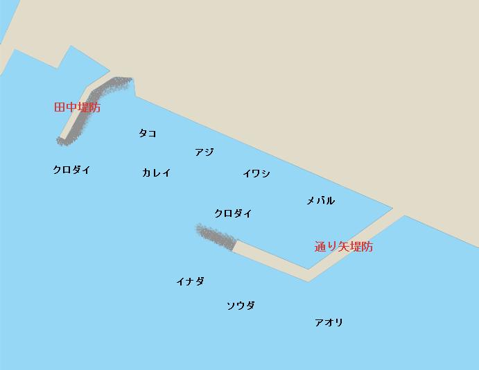 三崎港通り矢・田中堤防のポイント