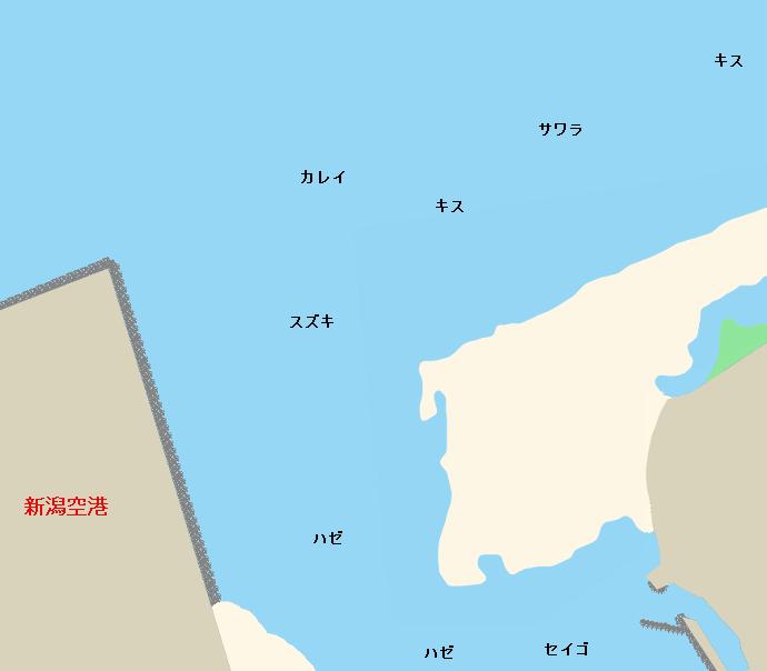 阿賀野川河口ポイント図