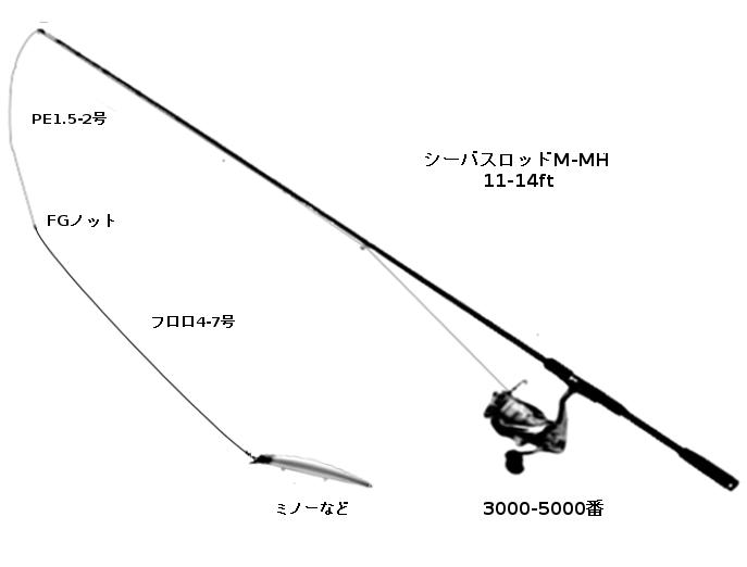 ヒラスズキタックル(ロッド:シーバスロッドミディアムクラス以上11-14ft、リール:スピニングリール3000-5000番、ライン:PR1.5-2号、リーダー:フロロカーボン4-7号、ルアー:ミノーなど)