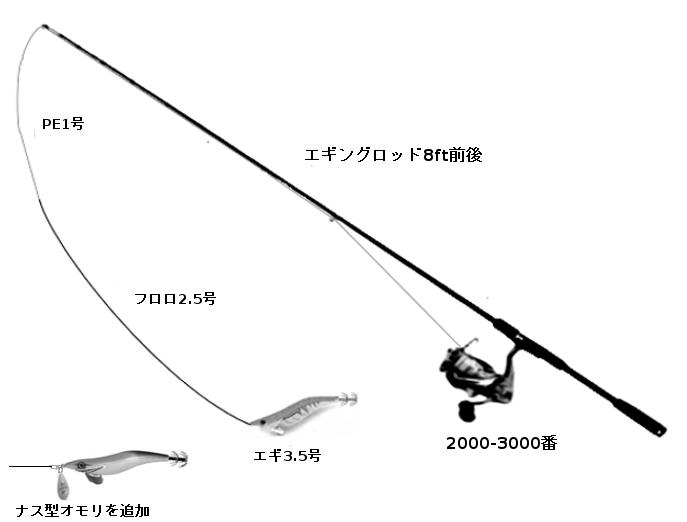 コウイカ狙いのエギングタックル(ロッド:エギングロッド8ft前後、リール:2000-3000番、仕掛け:エギ3.5号)