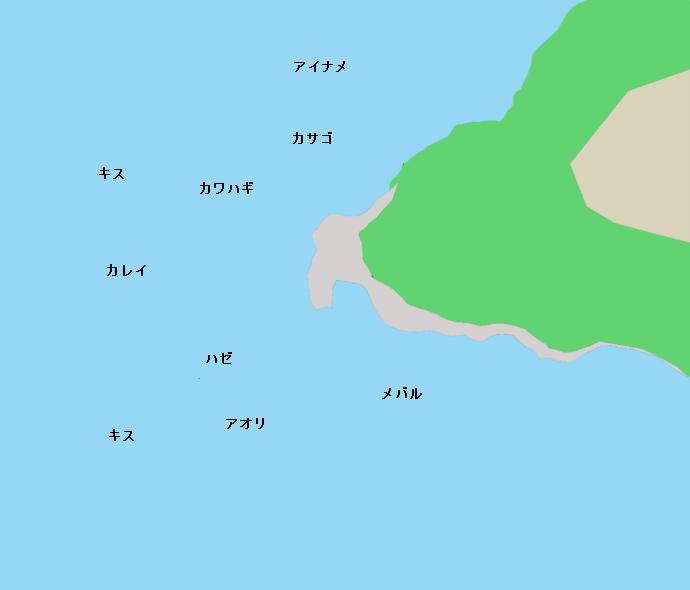 油壷名向崎の磯ポイント図