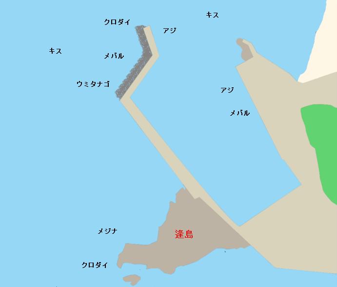 富浦港・逢島ポイント図