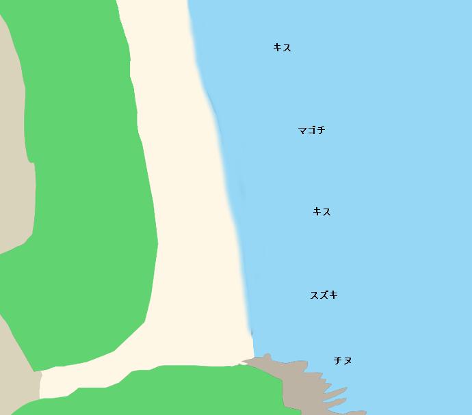 大岐海岸ポイント図
