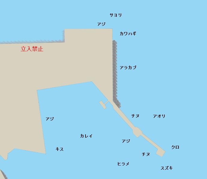鬼池港ポイント図