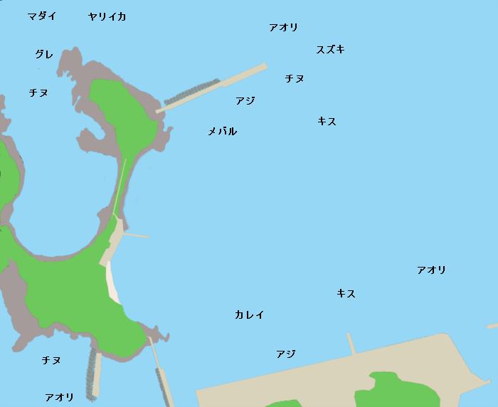 加賀漁港ポイント図