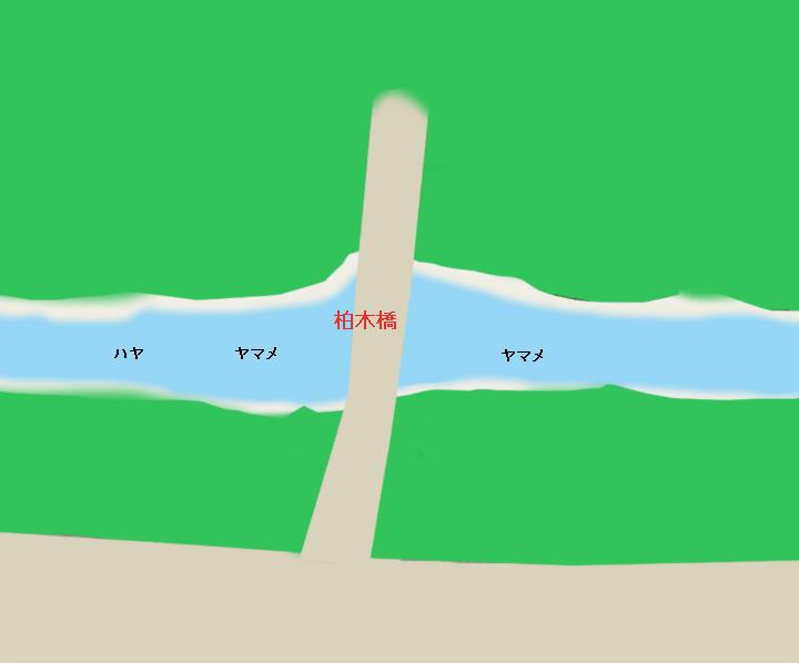 入間川渓流ポイント 柏木橋周辺(埼玉県飯能市)