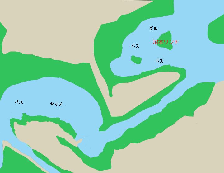 津久井湖沼本ワンド付近のポイント