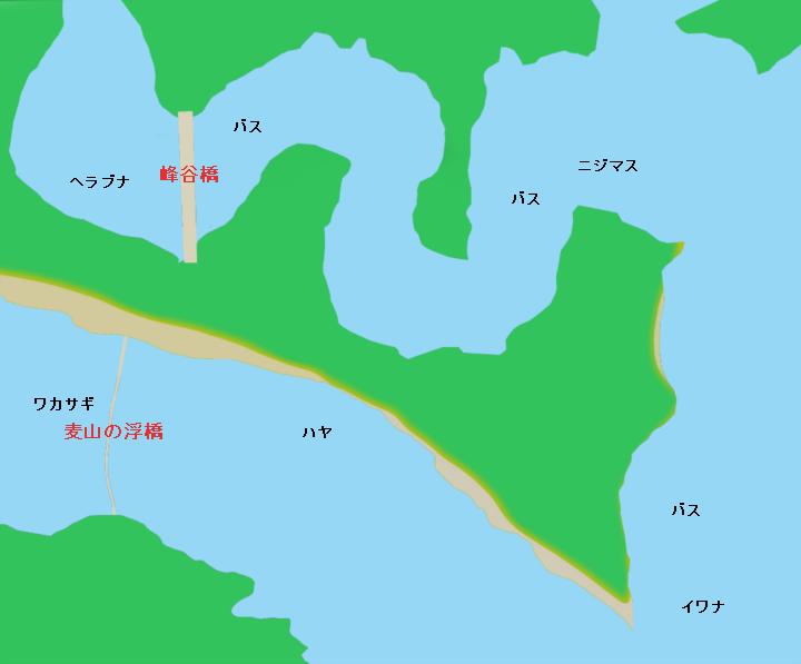 奥多摩湖 峰谷橋・麦山の浮橋(ドラム缶橋)周辺のポイント