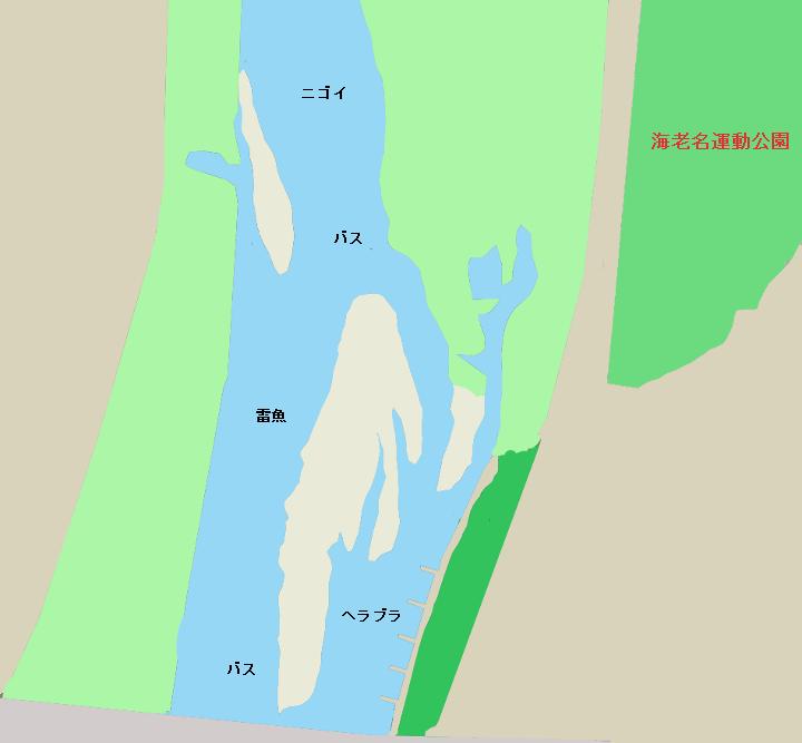 相模川海老名運動公園付近のポイント