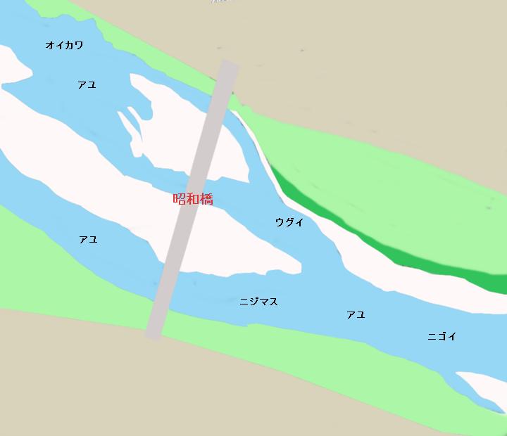 相模川昭和橋付近のポイント