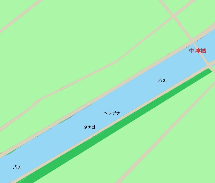 新利根川中神橋周辺のポイント