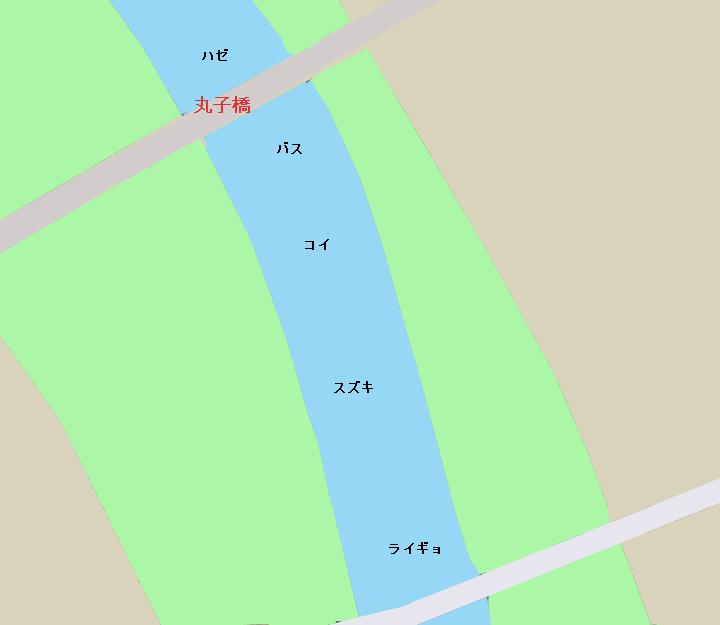 多摩川丸子橋周辺のポイント