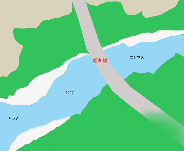多摩川昭和橋付近のポイント(西多摩郡奥多摩町)