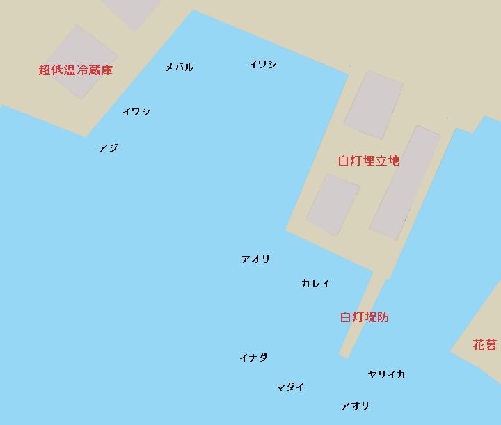 三崎港白灯堤防、白灯埋立地、超低温冷蔵庫周辺のポイント